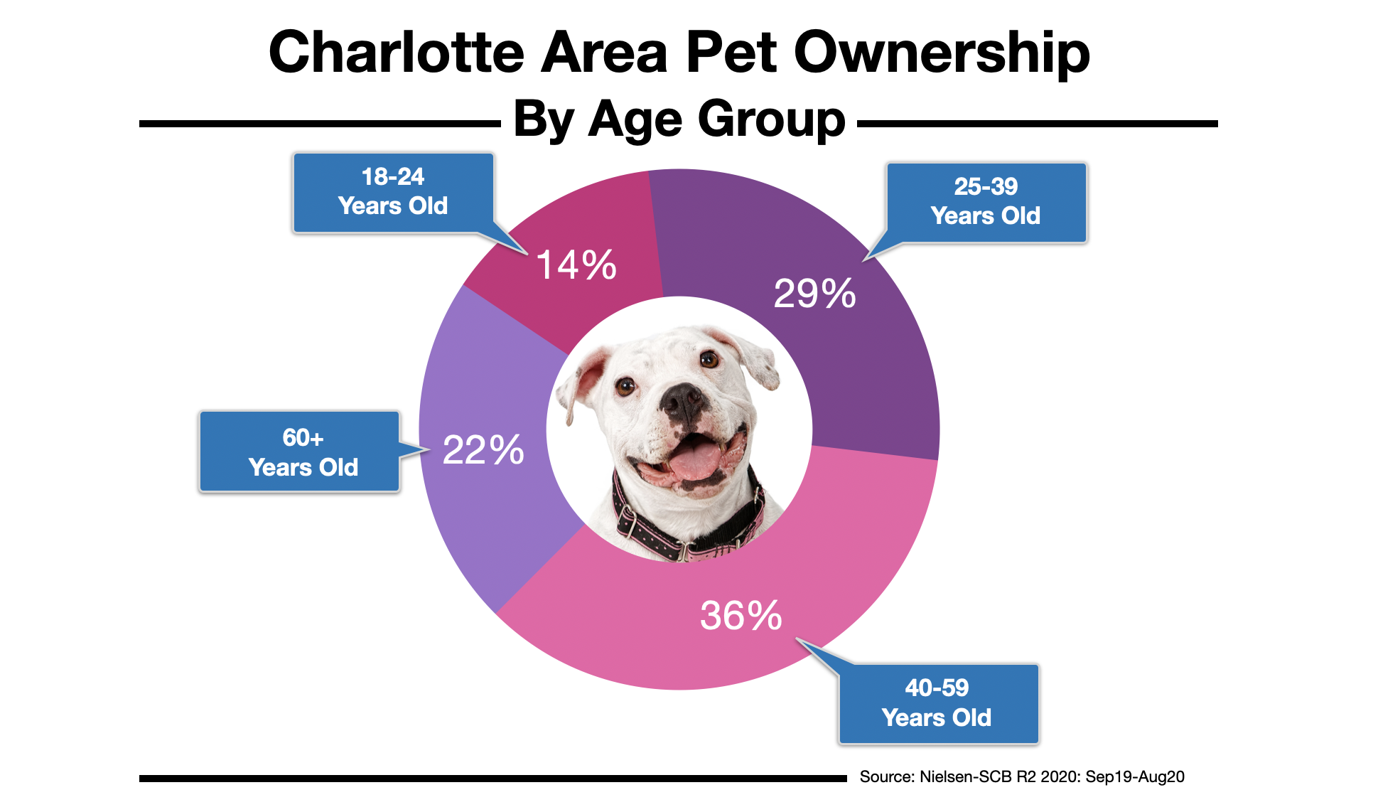 Advertising To Pet Owners In Charlotte